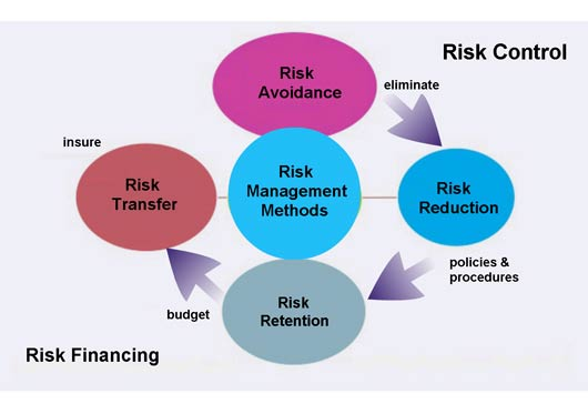 how to become a risk manager in australia