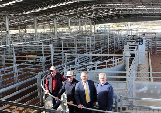 Scone saleyards complete